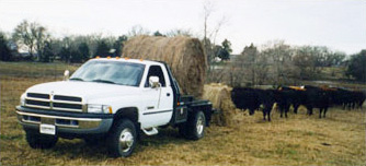 Bales on Balebed White Dodge